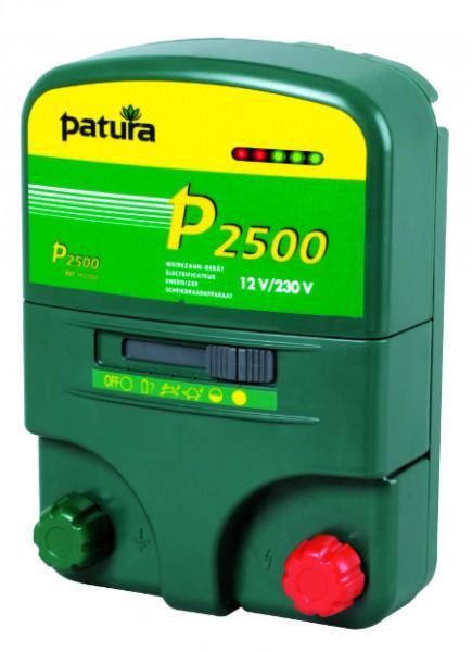 P2500, Multifunktions-Gerät, 230V/12V, mit Tragebox