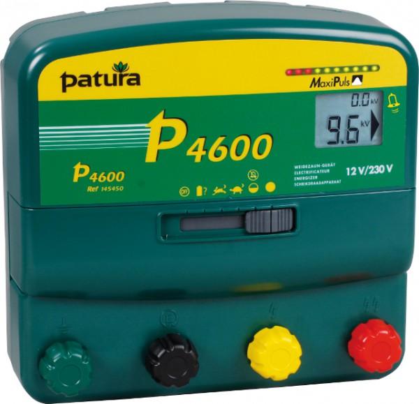 P4600, Multifunktions-Gerät, 230V/12V mit elektrifizierter Box und Erdstab