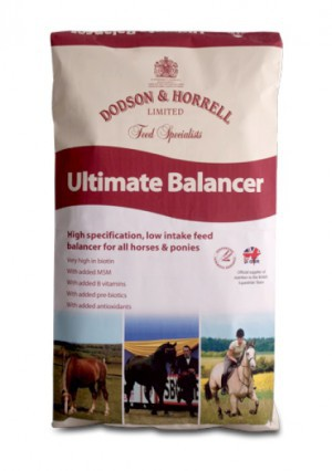 Dodson & Horrell Ultimate Balancer 20 kg