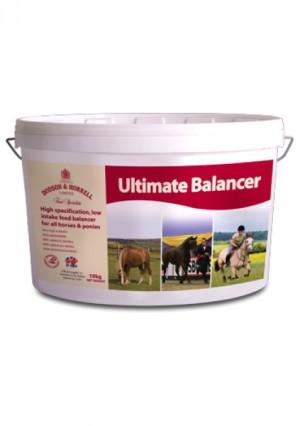 Dodson & Horrell Ultimate Balancer 10 kg