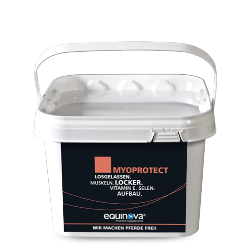 Höveler Myoprotect Powder 1,5 Kg