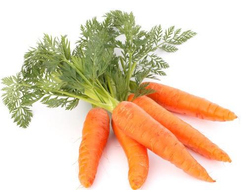 Karotten 20 kg